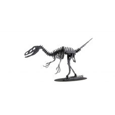3D model Dromaeosaurus FRIDOLIN